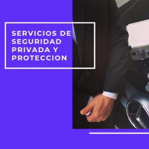 Servicios de seguridad privada y protección